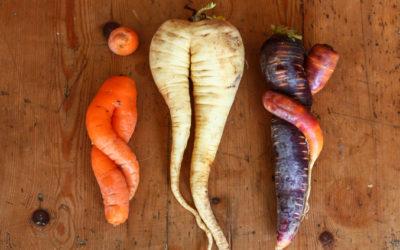Wer isst schon gerne normal? Eine Liebeserklärung an krummes Gemüse